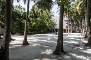Ellaidhoo Malediven
