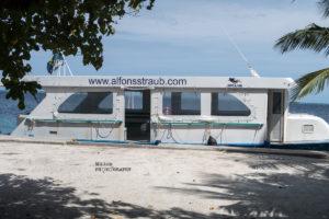 Mantas auf den Malediven