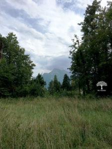 Berge von Salzburg
